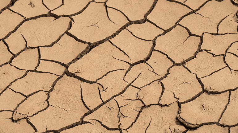 What Happens to Your Foundation During a Drought?