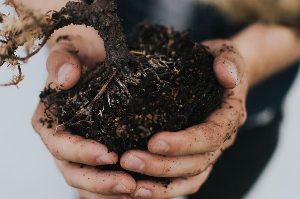 Foundation Repair 101: Expansive Soil
