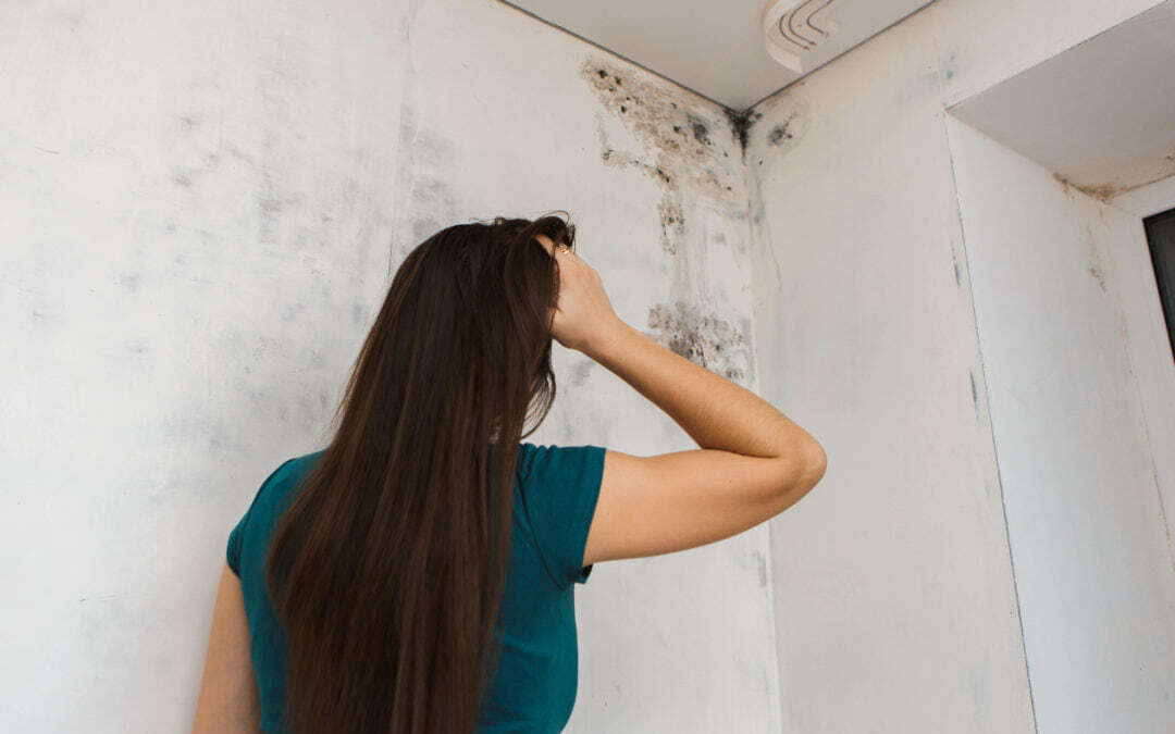 10 Facts About Mold