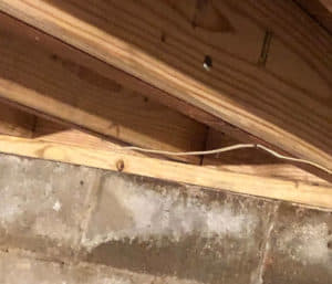 repaired joists and sill plate