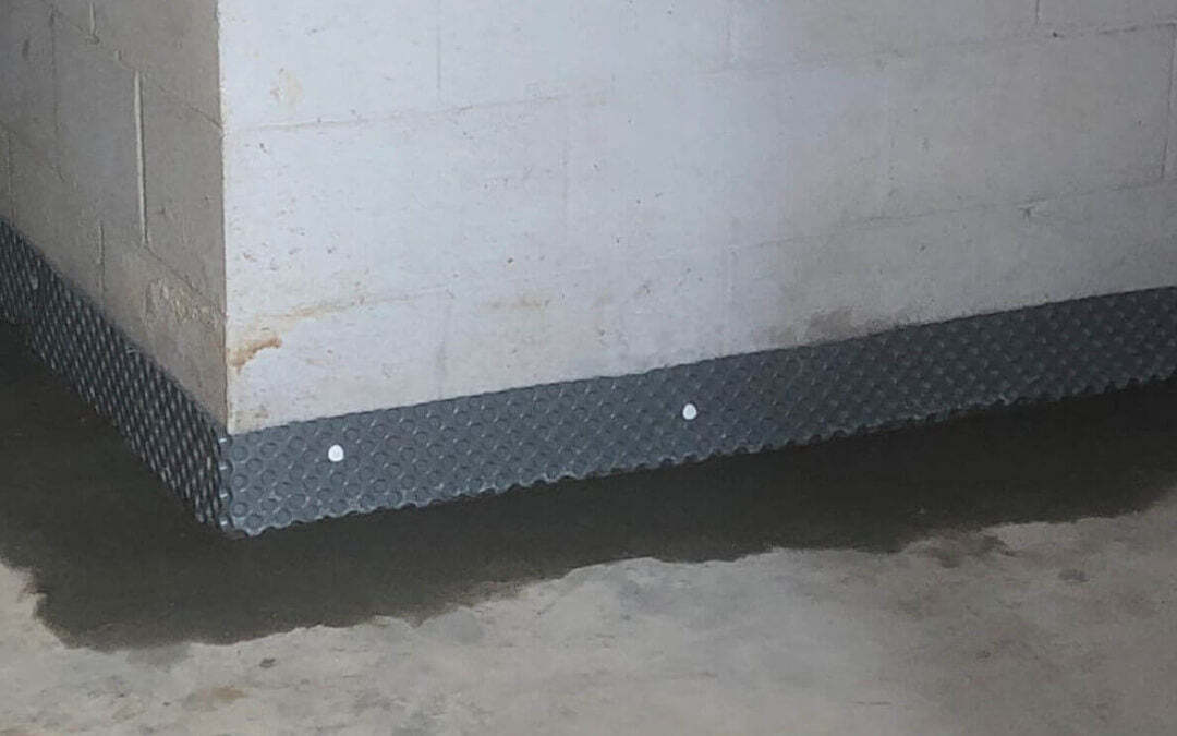 What's the Cost to Waterproof Your Basement? Detailed Types & Pricing.
