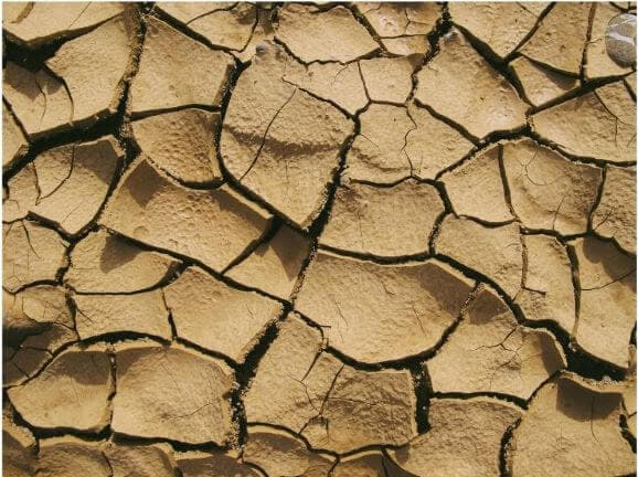 dry cracked earth without plants