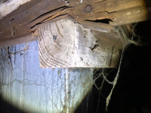 badly decayed joist splintering across support beam