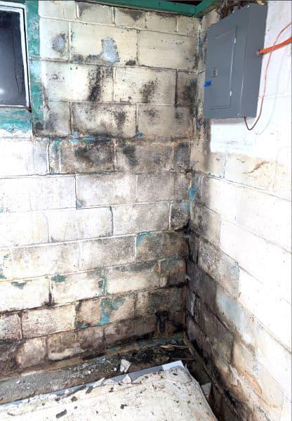 Basement Waterproofing An In Depth, Does Insurance Cover Leaky Basement